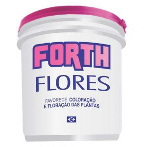 Forth_Flores